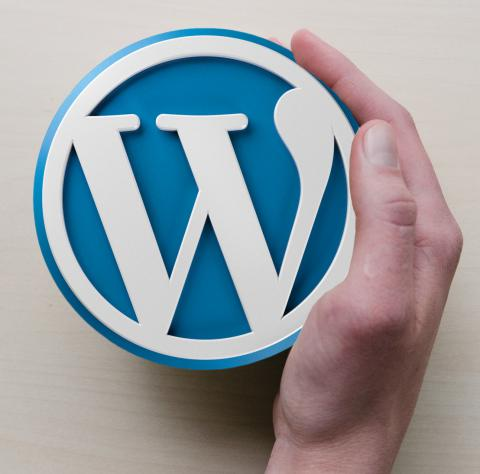 Pyssla om din Wordpress-installation